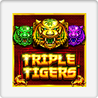 Tripple Tigers Slot
