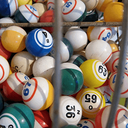 Why The Online Bingo Canada Offers Is Ideal For Newcomers