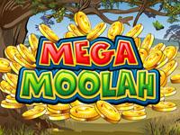 mega-moolah-progressive-slot