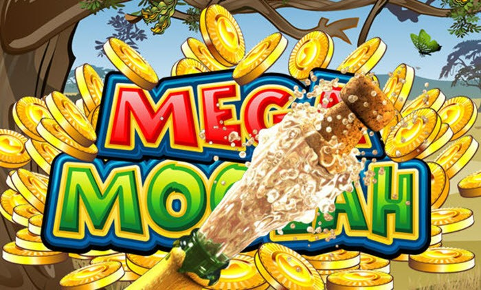 Mega Moolah Winner